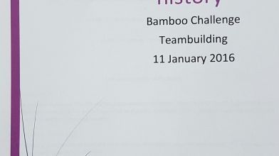 bamboe_bouwen_megavlieger_teambuilding_4