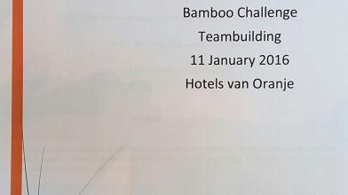 bamboe_bouwen_megavlieger_teambuilding_5